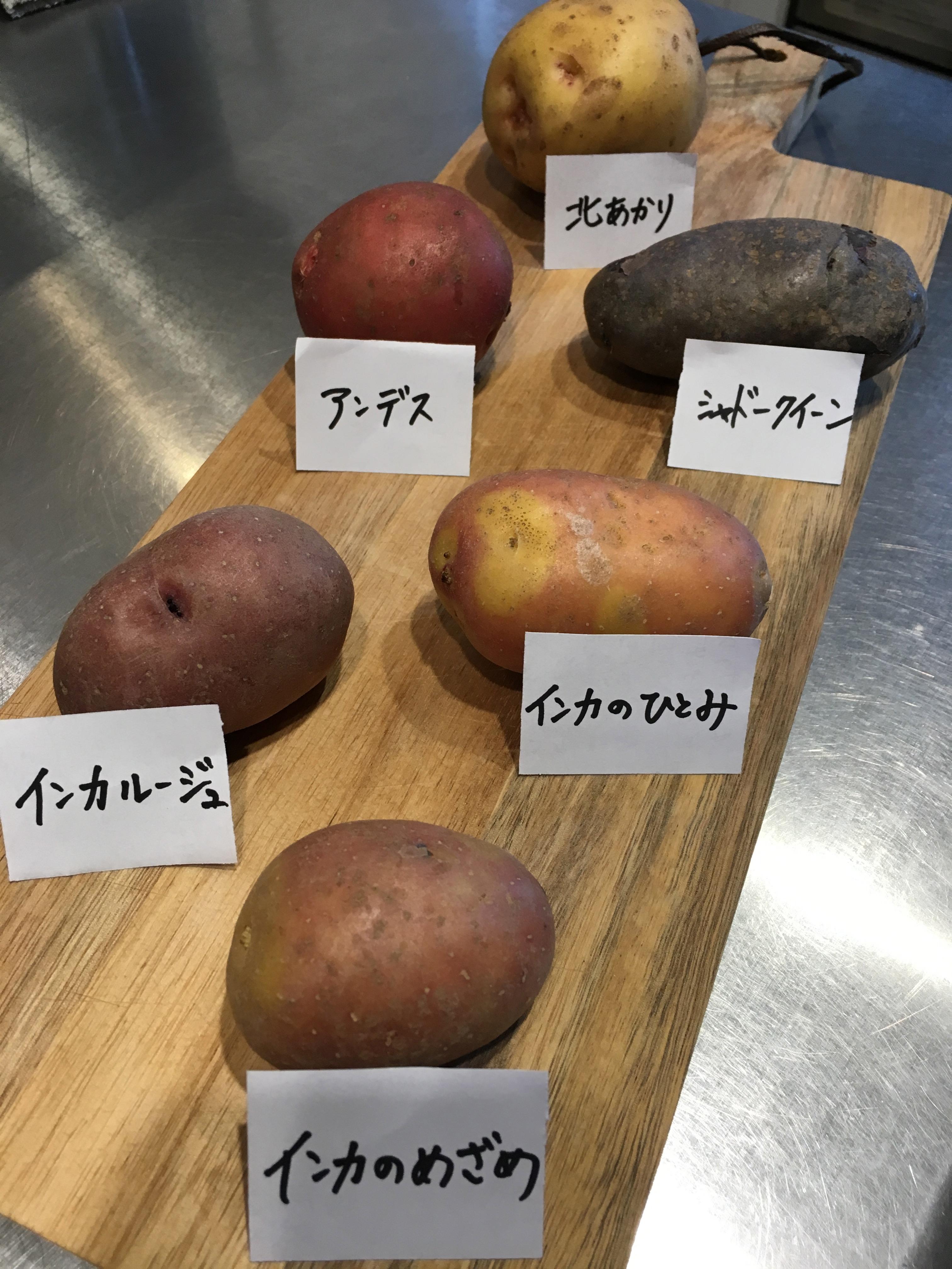 色々なジャガイモ達です。