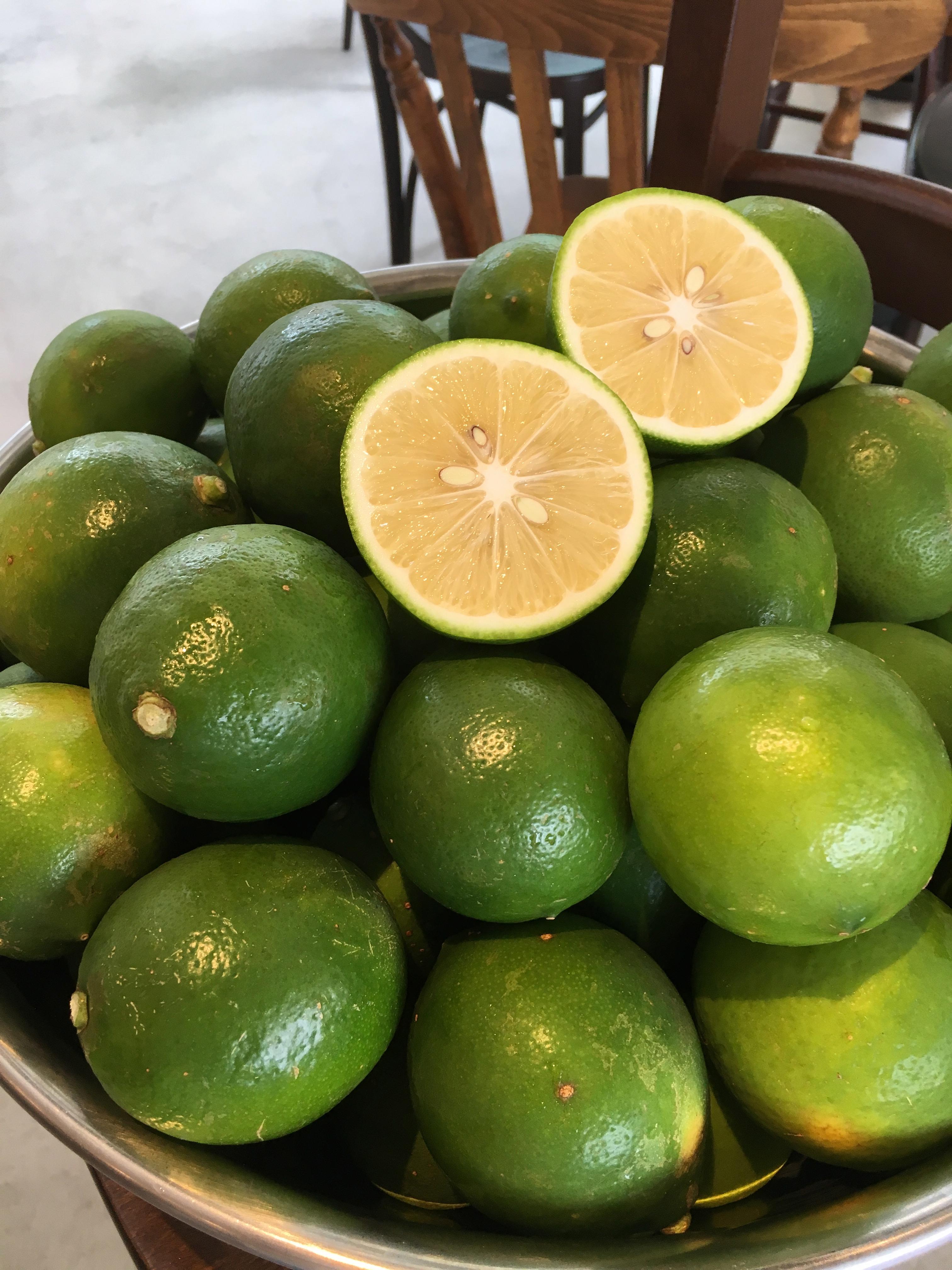 小笠原諸島母島産の無農薬島レモンが届きました!